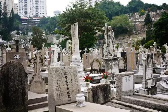 香港文化符号6.webp.jpg