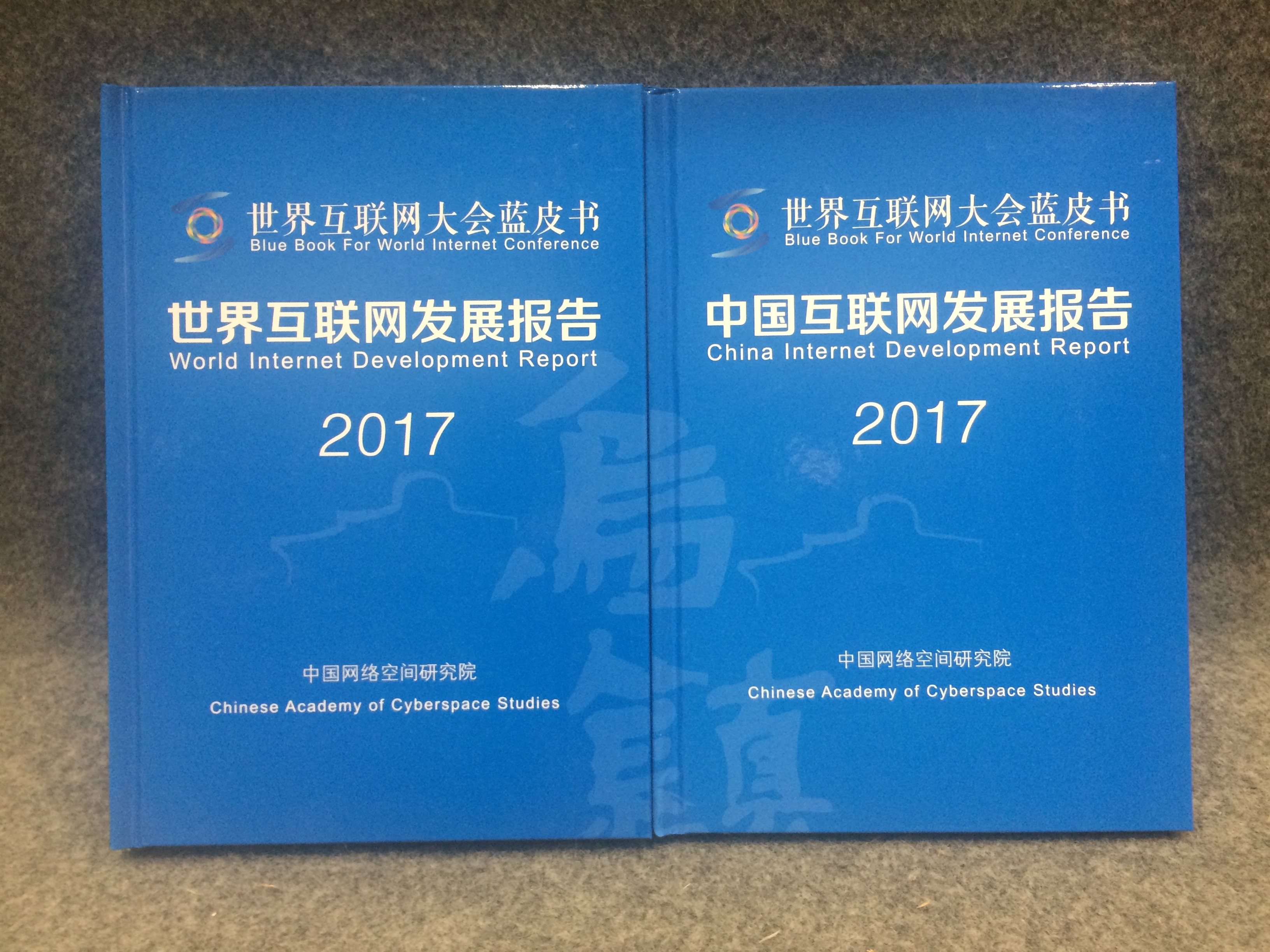 第四届世界互联网大会首发两本蓝皮书 展现互联网发展态势3.jpg