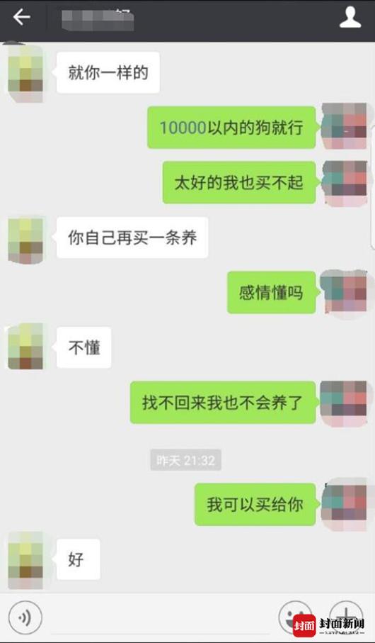 """""""疑索酬不成摔死小狗"""" 成都女子向狗主人大哭道歉11.png"""