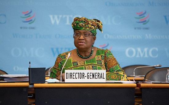 尼日利亚经济学家恩戈齐·奥孔乔-伊韦阿拉1日正式就任世界贸易组织第七任总干事.jpg