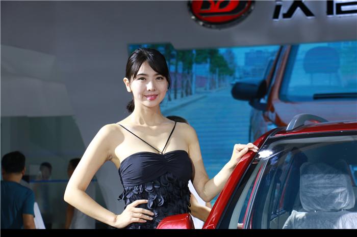 瑞易电动汽车标志