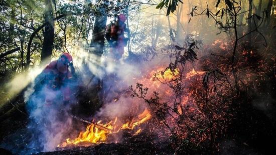四川木里森林火灾新增遇难者系坠落而亡